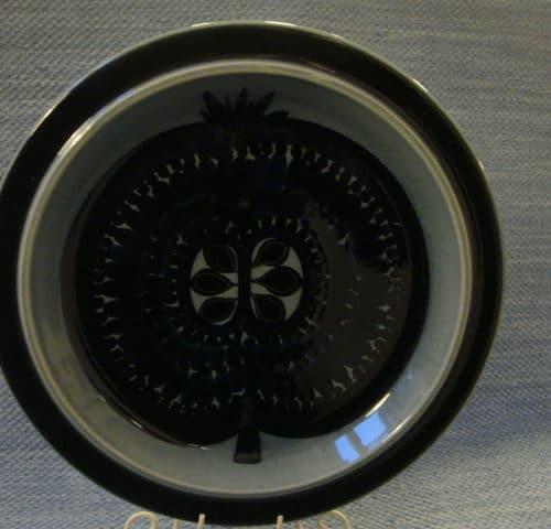 Fructus vati