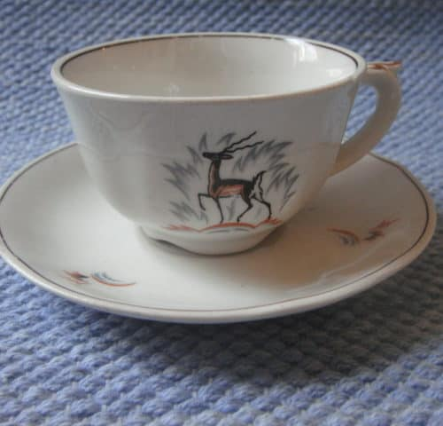 Kauris kahvikuppi
