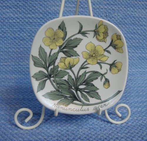 Niittyleinikki/Ranunculus acer