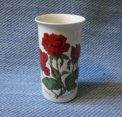 Rosa polyantha maljakko