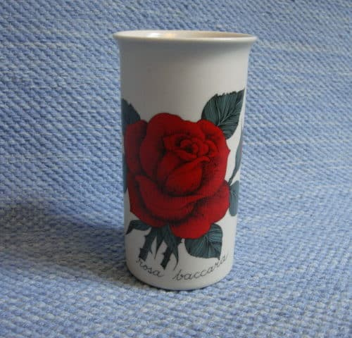 Ruusu punainen