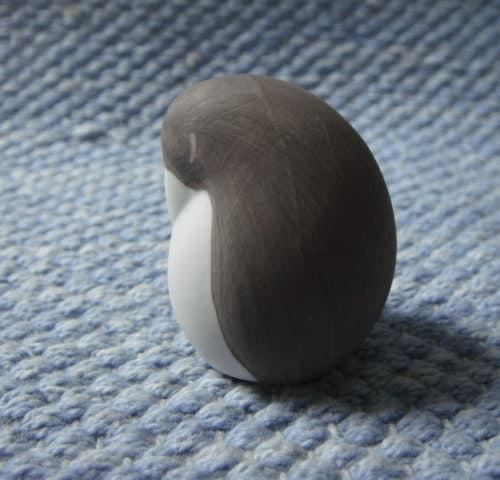 Pingviinin poikanen